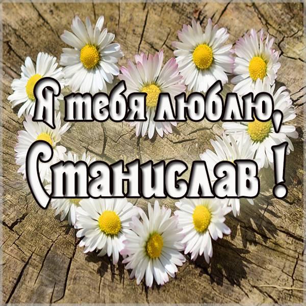 Картинка я люблю тебя Станислав - скачать бесплатно на otkrytkivsem.ru