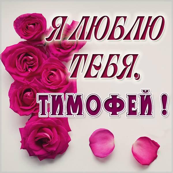 Картинка я люблю тебя Тимофей - скачать бесплатно на otkrytkivsem.ru