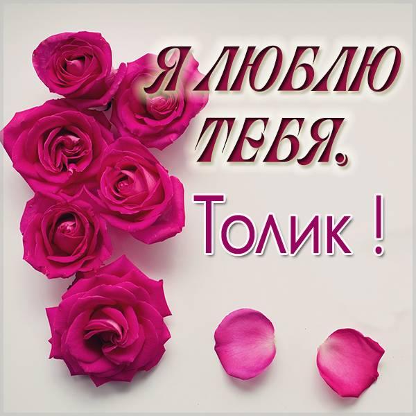 Картинка я люблю тебя Толик - скачать бесплатно на otkrytkivsem.ru