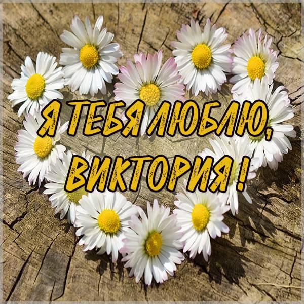Картинка я люблю тебя Виктория - скачать бесплатно на otkrytkivsem.ru