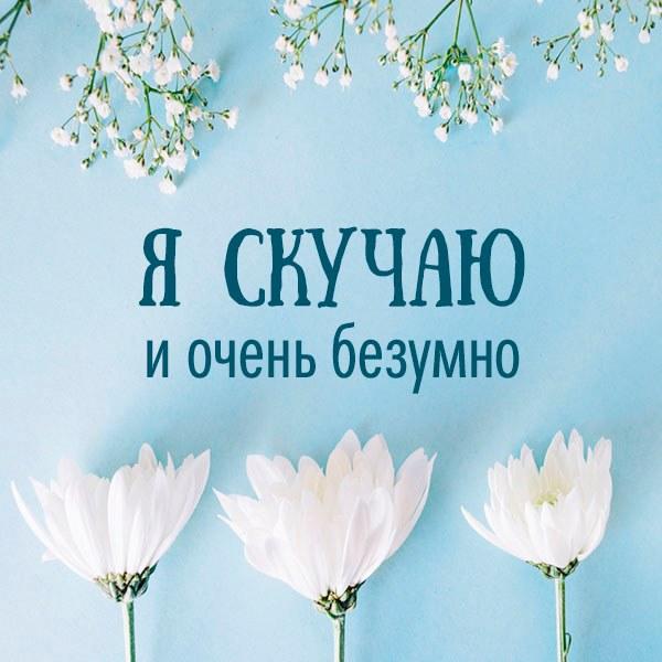 Картинка я скучаю и очень безумно - скачать бесплатно на otkrytkivsem.ru