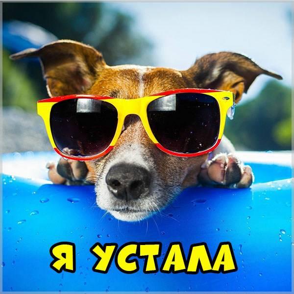 Картинка я устала прикольная смешная - скачать бесплатно на otkrytkivsem.ru