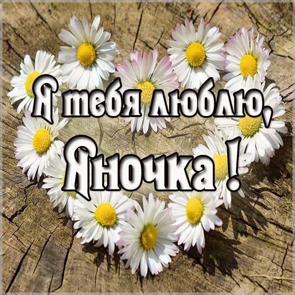 Картинка Яночка я тебя люблю - скачать бесплатно на otkrytkivsem.ru
