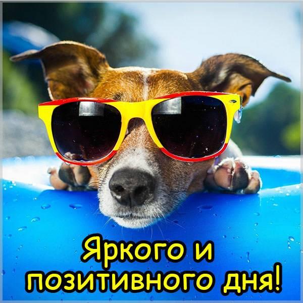 Картинка яркого и позитивного дня - скачать бесплатно на otkrytkivsem.ru