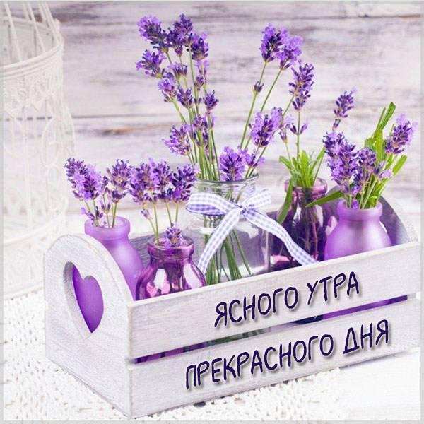 Картинка ясного утра прекрасного дня - скачать бесплатно на otkrytkivsem.ru