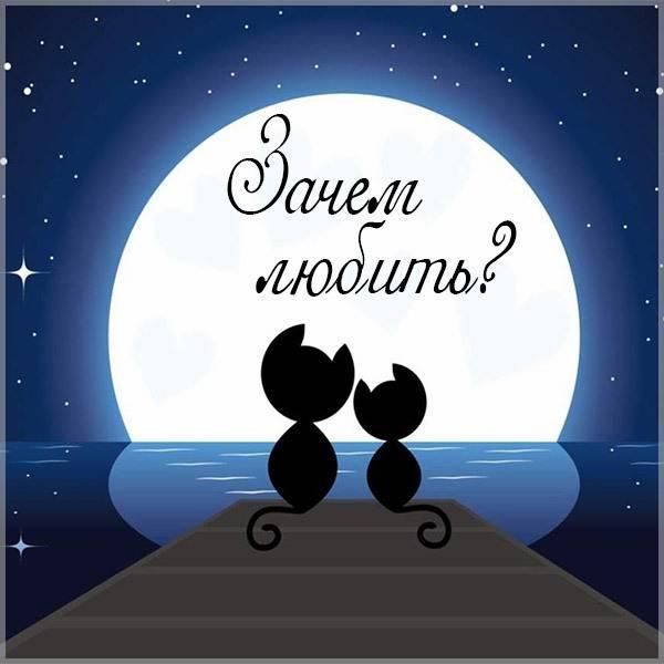 Картинка зачем любить - скачать бесплатно на otkrytkivsem.ru