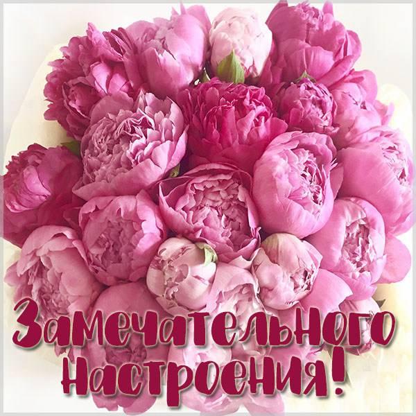Картинка замечательного настроения - скачать бесплатно на otkrytkivsem.ru