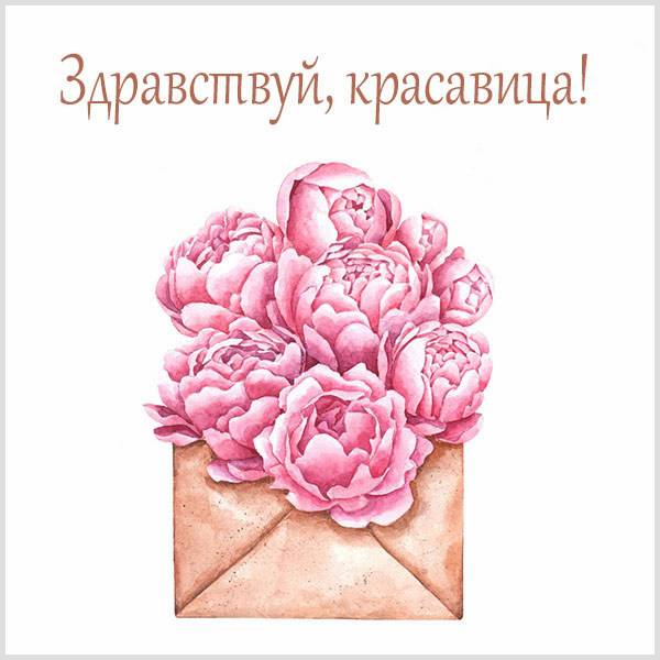 Картинка здравствуй красавица - скачать бесплатно на otkrytkivsem.ru