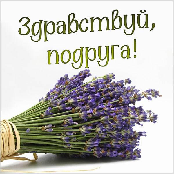 Картинка здравствуй подруга - скачать бесплатно на otkrytkivsem.ru