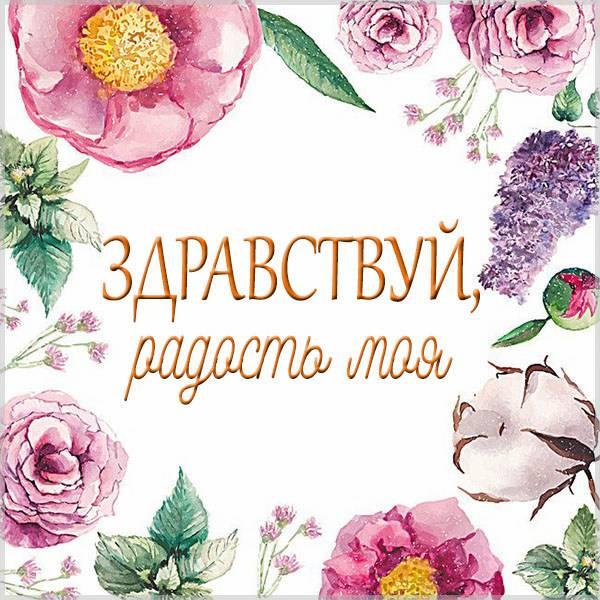 Картинка здравствуй радость моя - скачать бесплатно на otkrytkivsem.ru