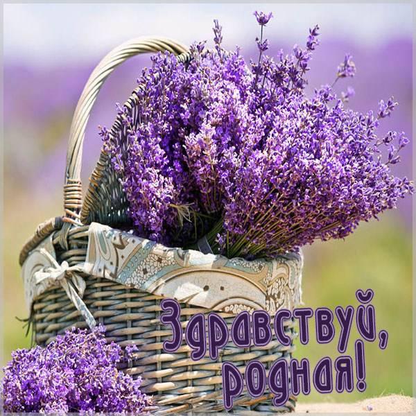 Картинка здравствуй родная - скачать бесплатно на otkrytkivsem.ru