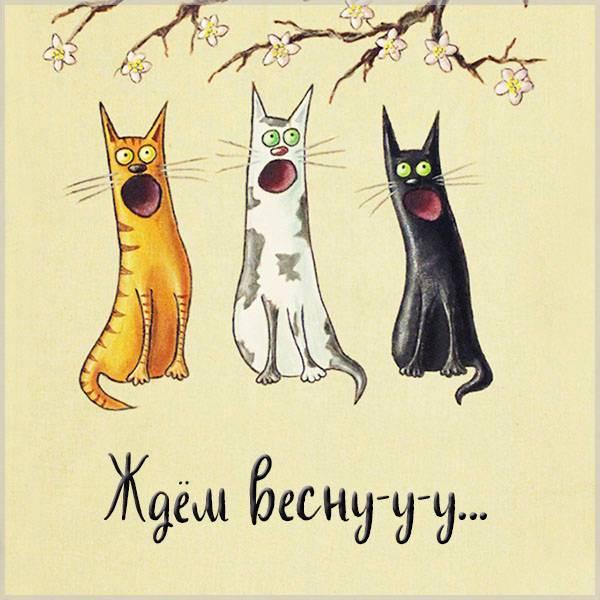 Картинка ждем весну прикольная - скачать бесплатно на otkrytkivsem.ru