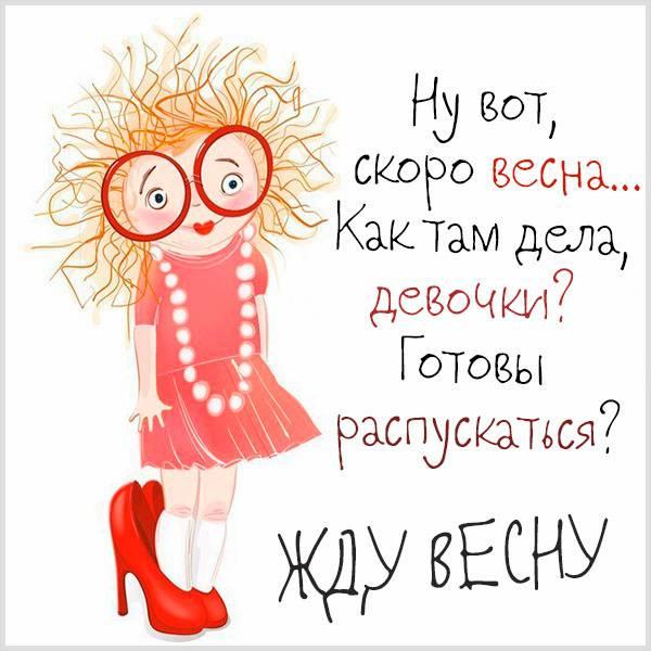 Картинка жду весну смешная - скачать бесплатно на otkrytkivsem.ru