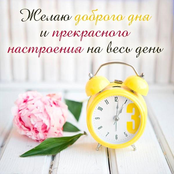 Картинка желаю доброго дня и хорошего настроения - скачать бесплатно на otkrytkivsem.ru