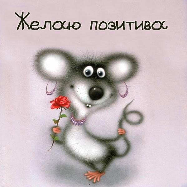 Картинка желаю позитива - скачать бесплатно на otkrytkivsem.ru