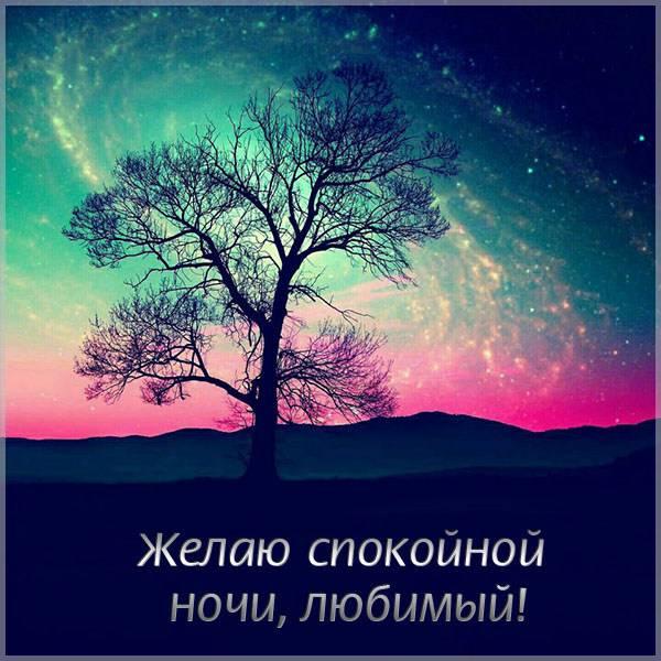 Картинка желаю спокойной ночи любимому - скачать бесплатно на otkrytkivsem.ru