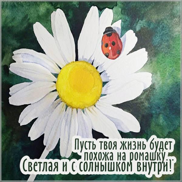 Картинка жене - скачать бесплатно на otkrytkivsem.ru