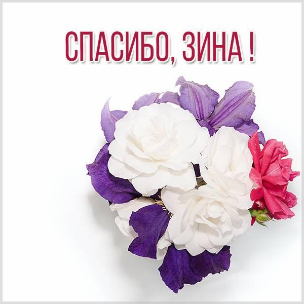Картинка Зина спасибо - скачать бесплатно на otkrytkivsem.ru