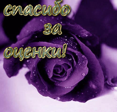 Картинки спасибо за оценки. - скачать бесплатно на otkrytkivsem.ru