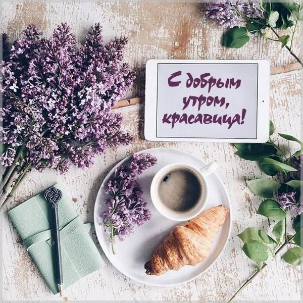 Классная картинка с добрым утром девушке - скачать бесплатно на otkrytkivsem.ru