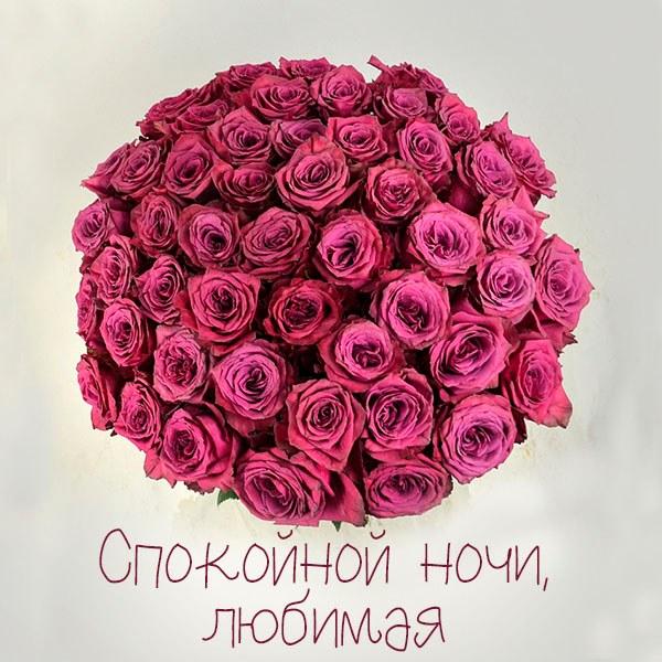 Классная картинка спокойной ночи любимая - скачать бесплатно на otkrytkivsem.ru