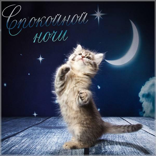 Классная картинка спокойной ночи - скачать бесплатно на otkrytkivsem.ru