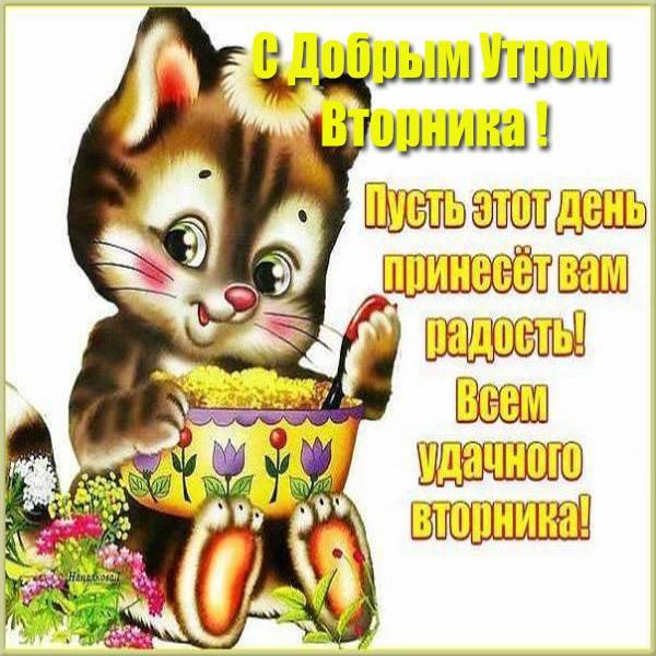 Красивая бесплатная открытка с добрым утром вторника - скачать бесплатно на otkrytkivsem.ru