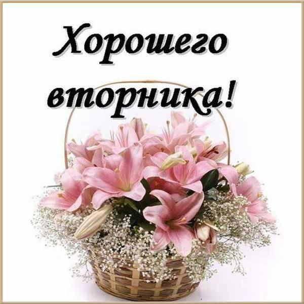 Красивая электронная открытка хорошего вторника - скачать бесплатно на otkrytkivsem.ru