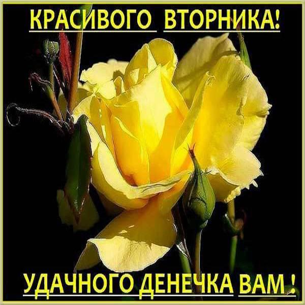 Красивая электронная открытка с днем вторника - скачать бесплатно на otkrytkivsem.ru
