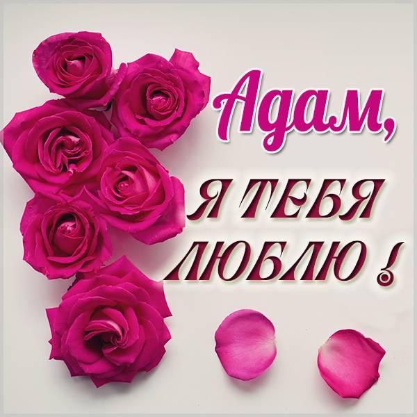 Красивая картинка Адам я тебя люблю - скачать бесплатно на otkrytkivsem.ru
