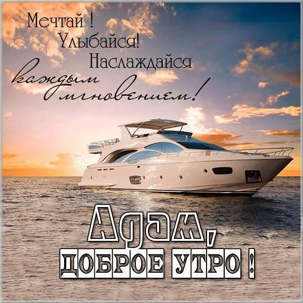 Красивая картинка доброе утро Адам - скачать бесплатно на otkrytkivsem.ru
