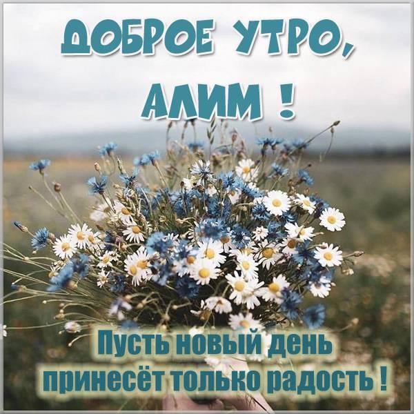 Красивая картинка доброе утро Алим - скачать бесплатно на otkrytkivsem.ru