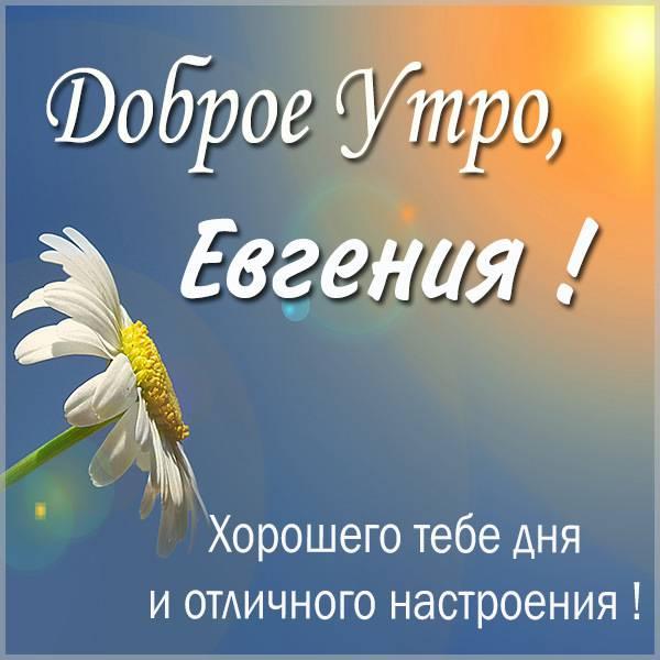 Красивая картинка доброе утро Евгения - скачать бесплатно на otkrytkivsem.ru