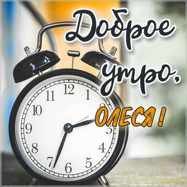 Красивая картинка доброе утро Олеся - скачать бесплатно на otkrytkivsem.ru
