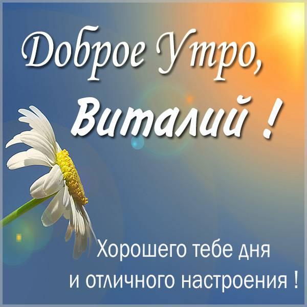 Красивая картинка доброе утро Виталий - скачать бесплатно на otkrytkivsem.ru