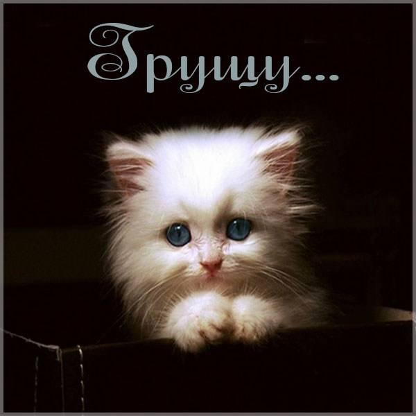 Красивая картинка грущу - скачать бесплатно на otkrytkivsem.ru