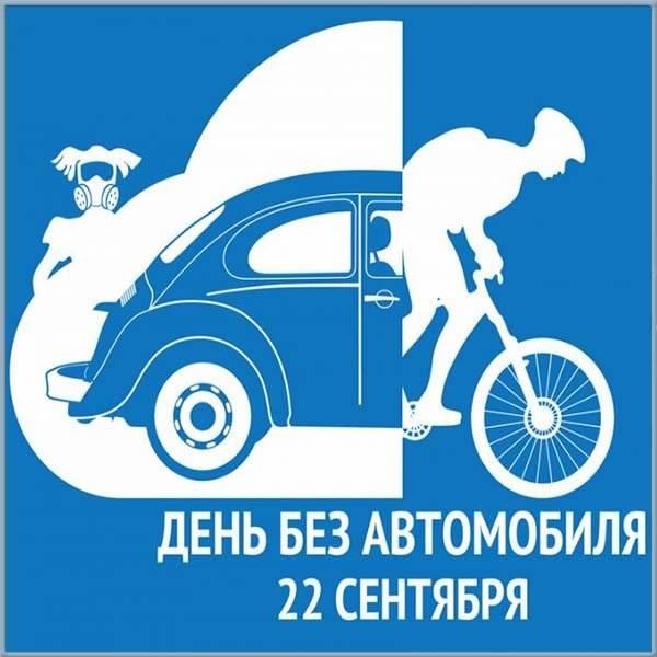 Красивая картинка на день без автомобиля - скачать бесплатно на otkrytkivsem.ru
