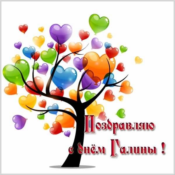 Красивая картинка с днем Галины - скачать бесплатно на otkrytkivsem.ru