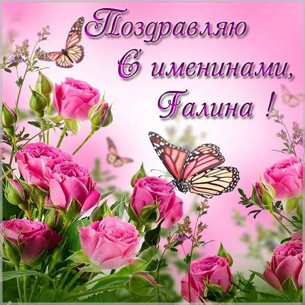 Красивая картинка с днем имени Алла - скачать бесплатно на otkrytkivsem.ru
