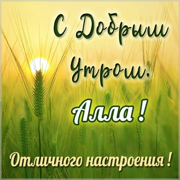 Красивая картинка с добрым утром Алла - скачать бесплатно на otkrytkivsem.ru