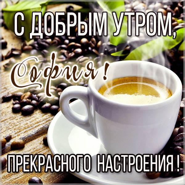 Красивая картинка с добрым утром София - скачать бесплатно на otkrytkivsem.ru