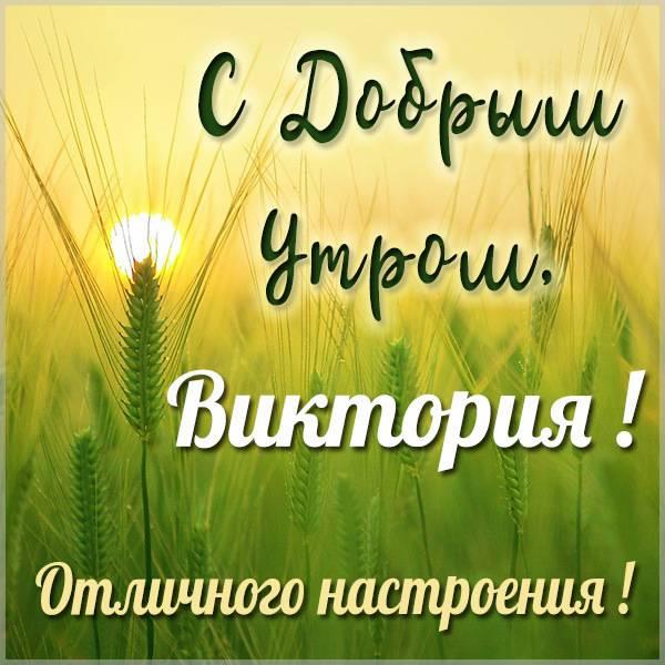 Красивая картинка с добрым утром Виктория - скачать бесплатно на otkrytkivsem.ru