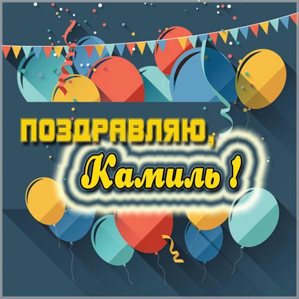 Красивая картинка с именем Камиль - скачать бесплатно на otkrytkivsem.ru