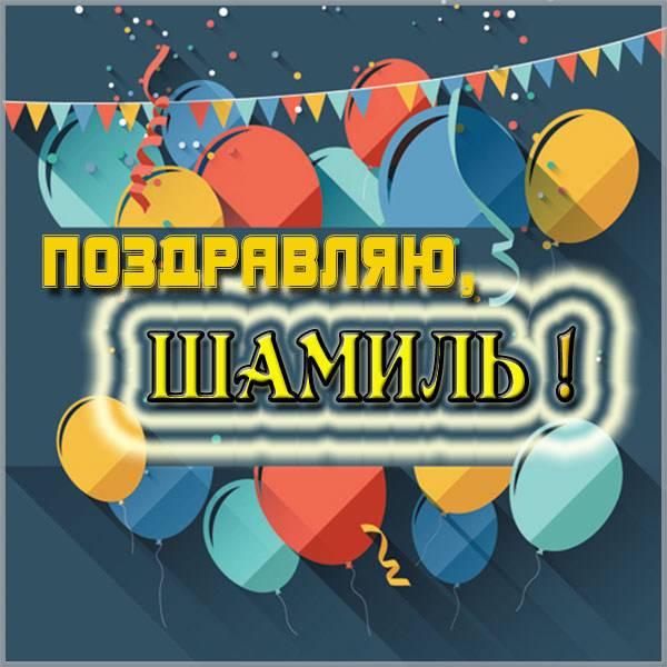 Красивая картинка с именем Шамиль - скачать бесплатно на otkrytkivsem.ru