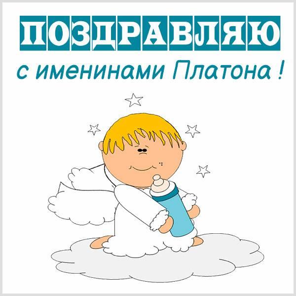 Красивая картинка с именинами Платона - скачать бесплатно на otkrytkivsem.ru