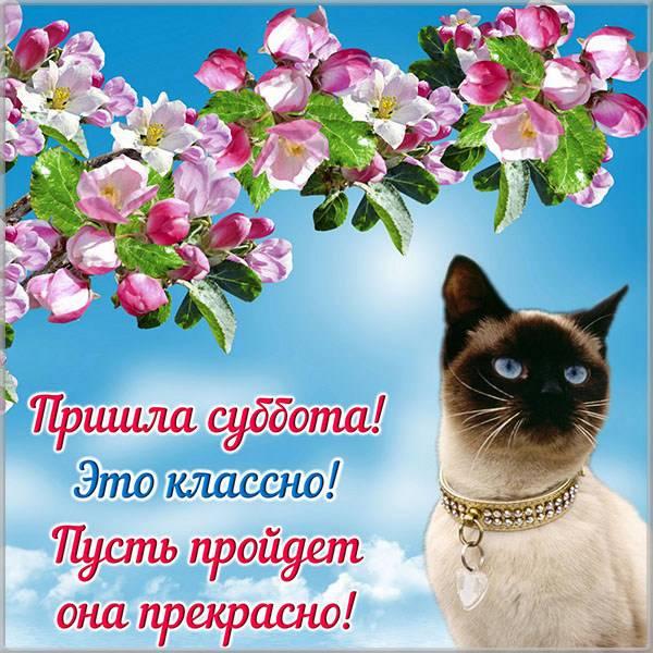 Красивая картинка с субботой - скачать бесплатно на otkrytkivsem.ru