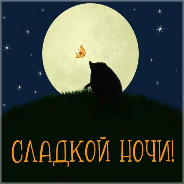 Красивая картинка сладкой ночи - скачать бесплатно на otkrytkivsem.ru