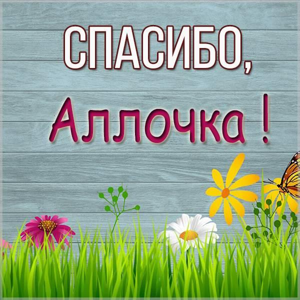 Красивая картинка спасибо Аллочка - скачать бесплатно на otkrytkivsem.ru