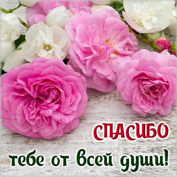 Красивая картинка спасибо от всей души - скачать бесплатно на otkrytkivsem.ru