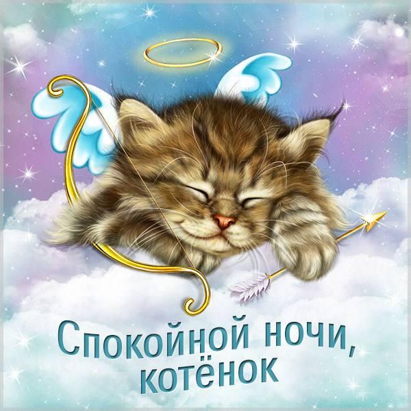 Красивая картинка спокойной ночи котенок - скачать бесплатно на otkrytkivsem.ru